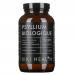 Poudre de Psyllium Biologique