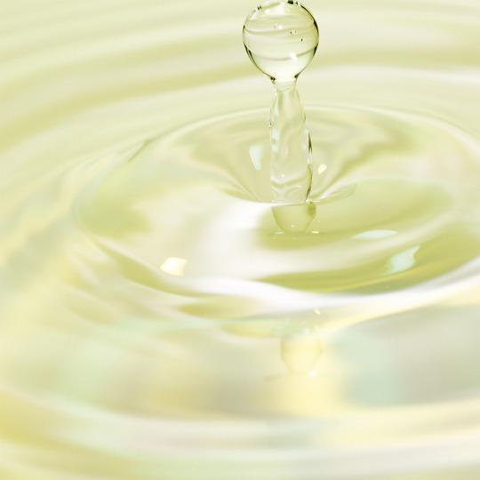 Lotion purifiante équilibrante